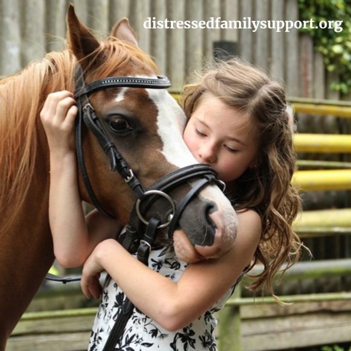Hippotherapy Rehabilitation for Children with Special Needs